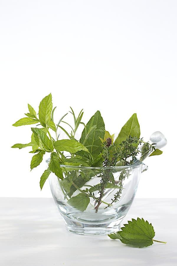 Phytotherapy - medicinalväxter och blommor i en mortel royaltyfri foto