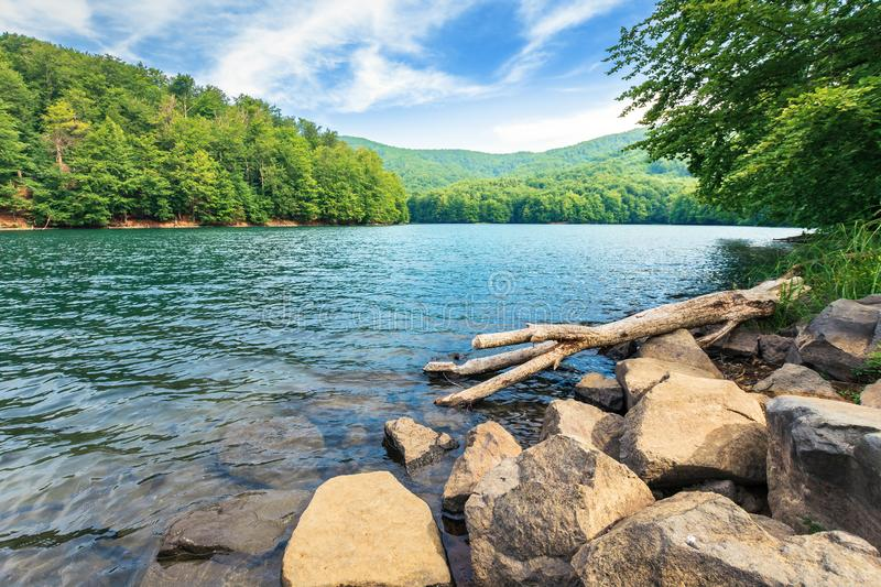 Piękna lato sceneria blisko halnego jeziora fotografia stock