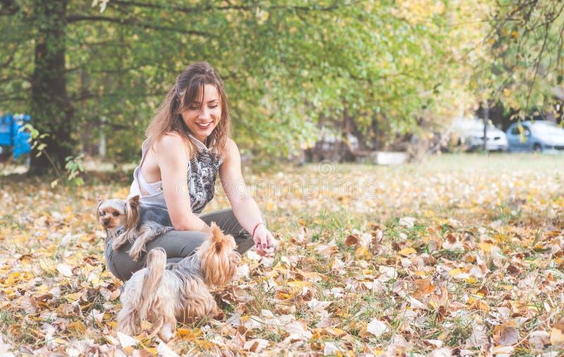Piękna młoda dziewczyna z jej Yorkshire teriera psa szczeniakiem cieszy się i bawić się w jesień dniu w parkowej selekcyjnej ostr obraz stock