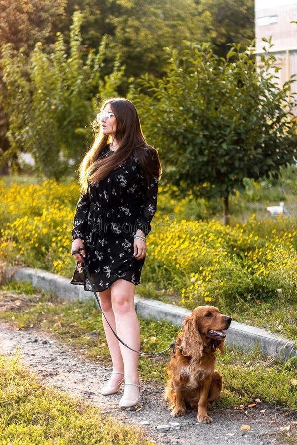 Piękna młoda kobieta chodzi z psem na pogodnym letnim dniu zdjęcie stock