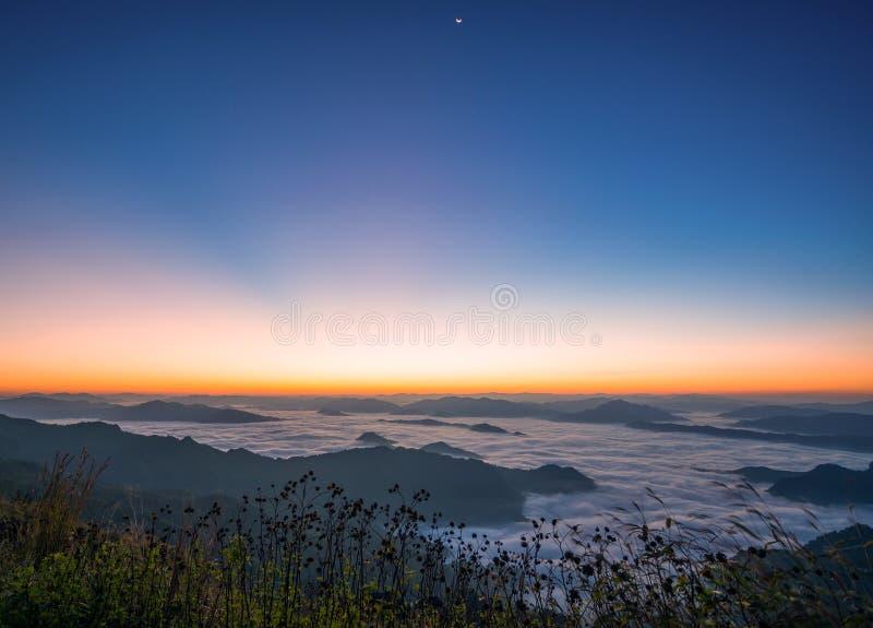 Piękna naturalna krajobrazowa Denna mgła Z pierwszy ranku słońca jaskrawą górą zdjęcia stock