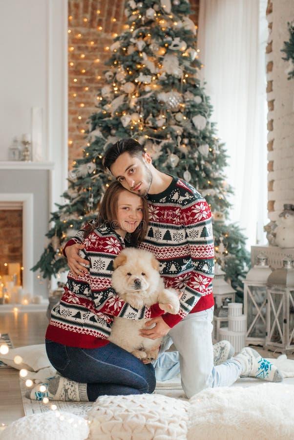 Piękna para z psem chow chow w Bożenarodzeniowych dekoracjach zdjęcie stock