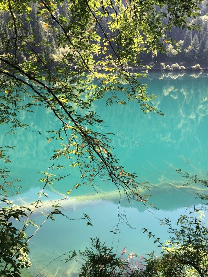Piękna sceneria Jiuzhaigou w Chiny, Hubo, zieleni wzgórzach, las, wodnych i zielonych! zdjęcie stock