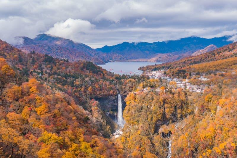 Piękna siklawa w jesień lesie od odgórnego widoku obraz stock