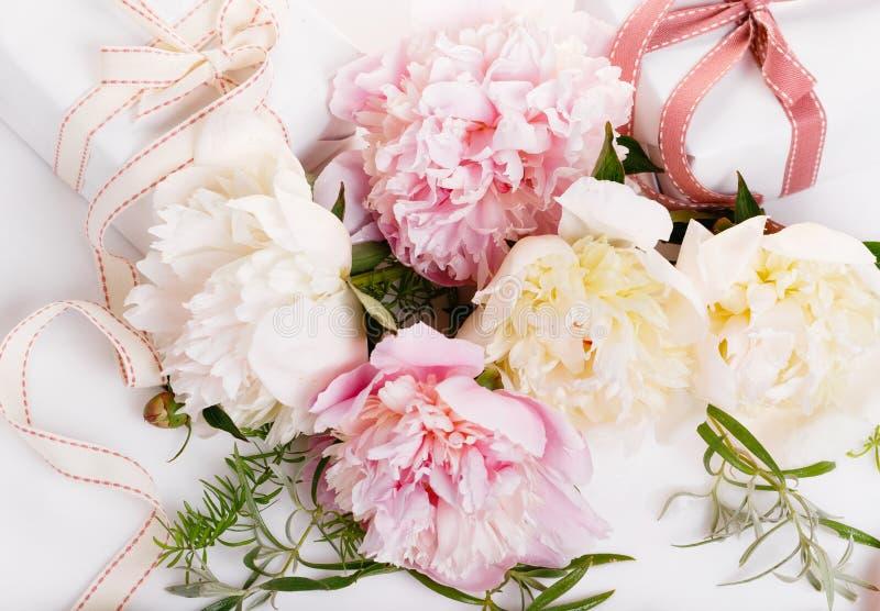Piękni różowi peonia kwiaty na bielu stole z kopii przestrzenią dla twój odgórnego widoku teksta mieszkania i kłaść styl zdjęcie stock