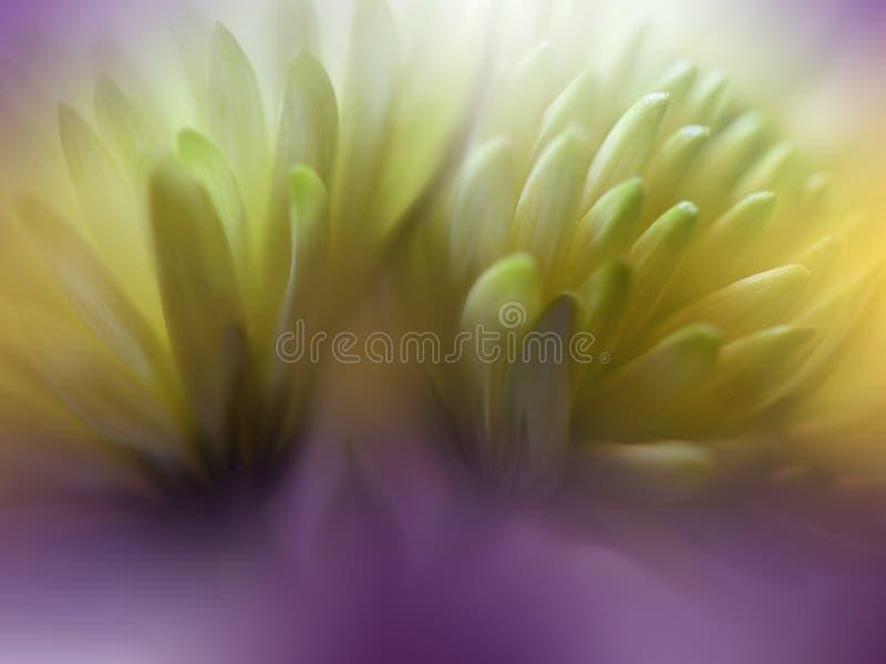 pięknie się tło charakteru wektora Kwiecisty fantazja projekt Artystyczni abstraktów kwiaty Sztuki fotografia Wiosna, lato, kreat obrazy stock