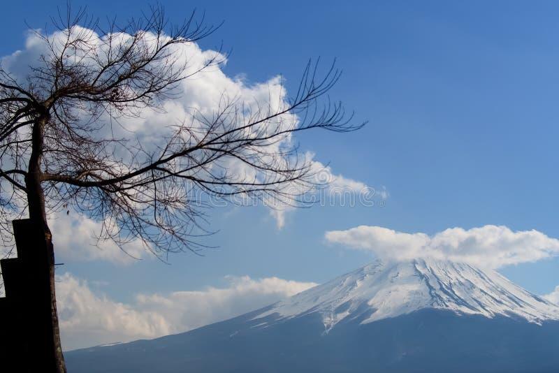 Piękny Halny Fuji, San w chmurach jako tło i niebieskim niebie obraz royalty free