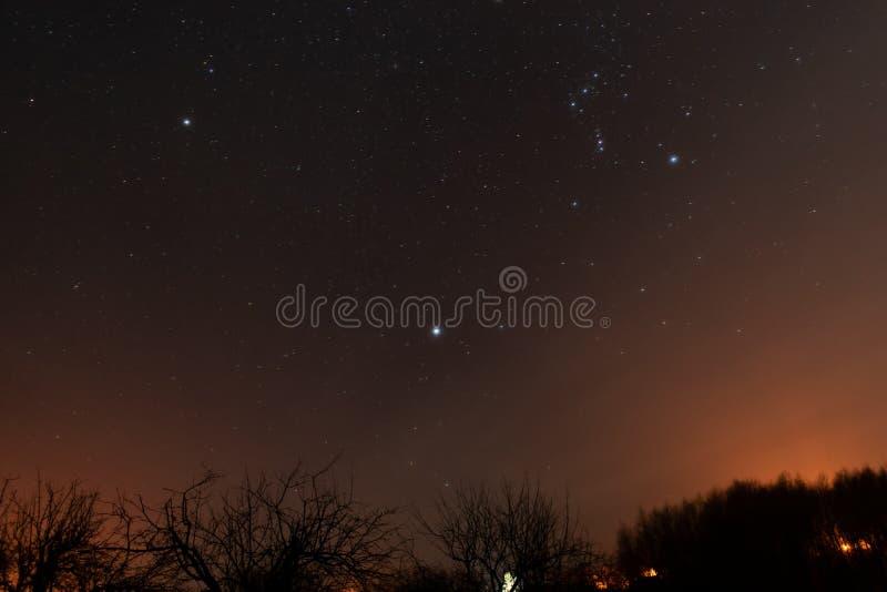 piękny ilustraci krajobrazu noc wektor Niebo z gwiazdami fotografia royalty free
