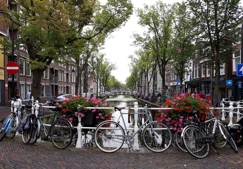 Piękny krajobraz stary grodzki Delft z kwiatami, kanałem i rowerami, zdjęcie royalty free