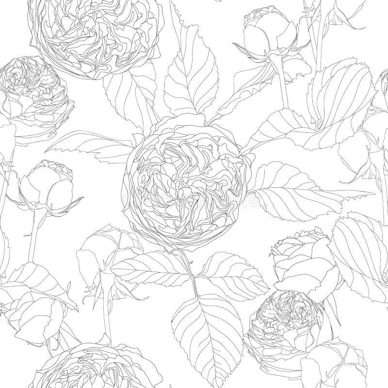 Piękny monochromatyczny czarny i biały bezszwowy wzór z różami, liście royalty ilustracja
