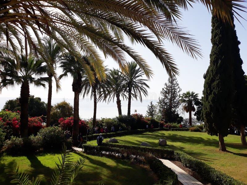 Piękny ogród przegapia morze Galilee, Izrael 6 2018 Kwiecień obrazy royalty free