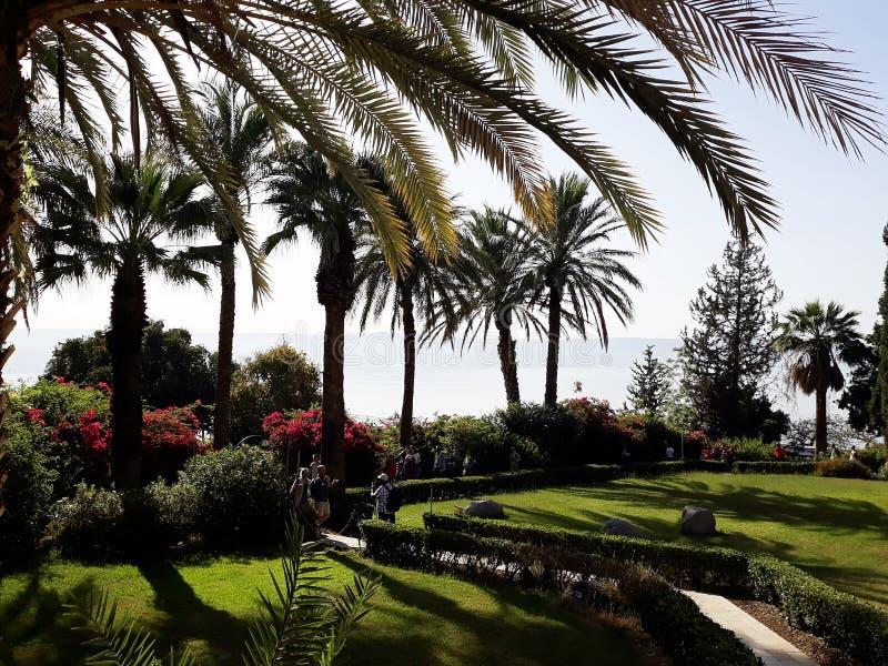 Piękny ogród przegapia morze Galilee, Izrael 6 2018 Kwiecień zdjęcie stock