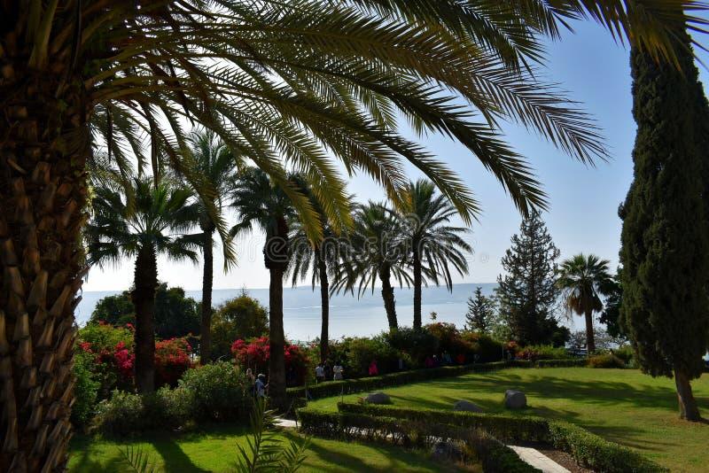 Piękny ogród przegapia morze Galilee, Izrael 6 2018 Kwiecień fotografia stock