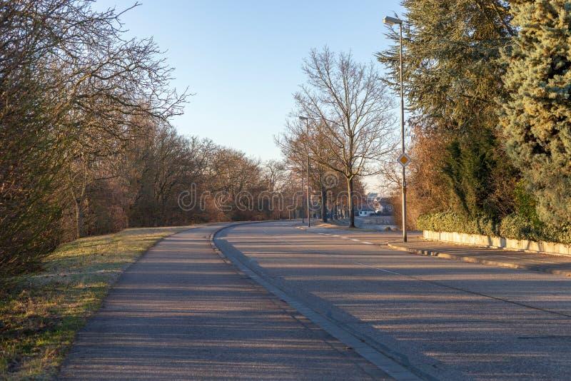 Piękny wiosna krajobraz przy ranku parkiem w Frankenthal zdjęcie stock