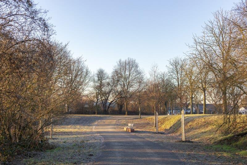 Piękny wiosna krajobraz przy ranku parkiem w Frankenthal zdjęcie royalty free