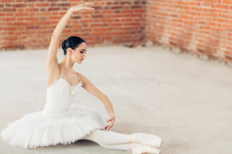 Piękny wyszkolony baletniczy tancerz występu taniec admiracja zdjęcia royalty free