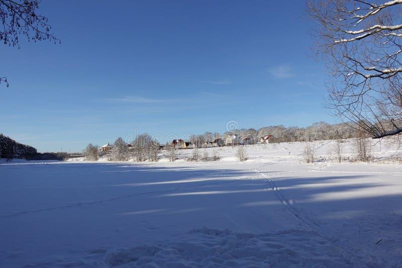 Piękny zimy landscape Wioska blisko lasowego niebieskiego nieba śnieżnego pola i Mroźny słoneczny dzień Rosja fotografia royalty free