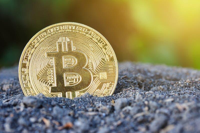 Pièce de monnaie de bitcoin d'or photo libre de droits