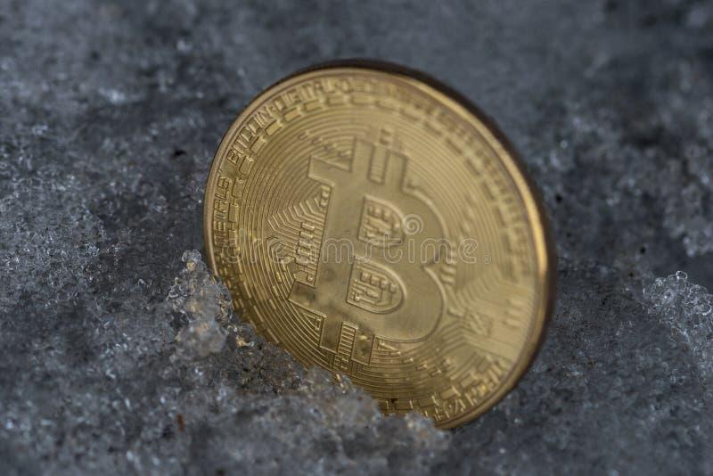 Pièce de monnaie d'or de bitcoin en glace photos libres de droits