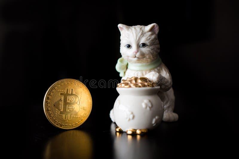 Pièce de monnaie simple de Bitcoin avec un chat images libres de droits