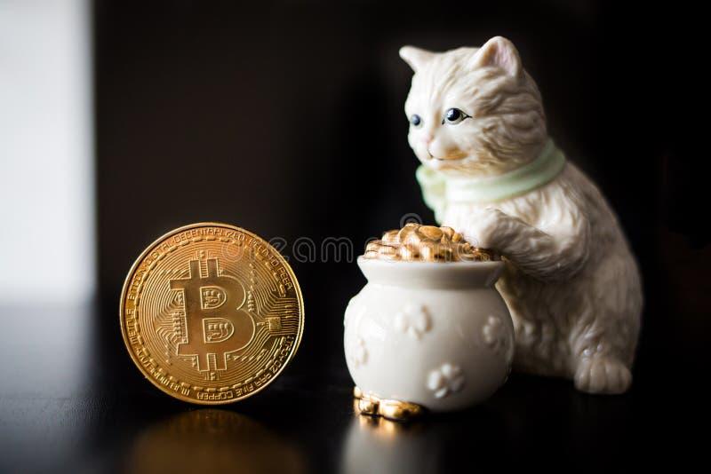 Pièce de monnaie simple de Bitcoin avec un chat photographie stock libre de droits