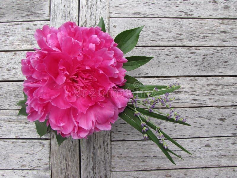 Pièce maîtresse extérieure de jardin photographie stock libre de droits
