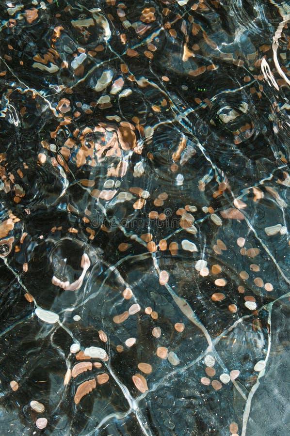 Pièces de monnaie dans l'eau images stock