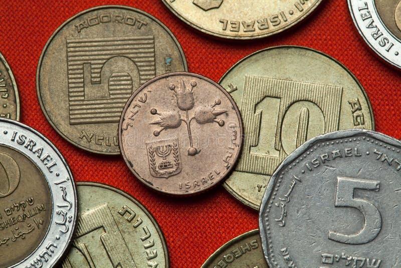 Pièces de monnaie de l'Israël grenades trois images libres de droits
