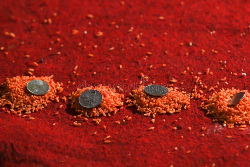 Pièces de monnaie sur les textures colorées de riz images stock