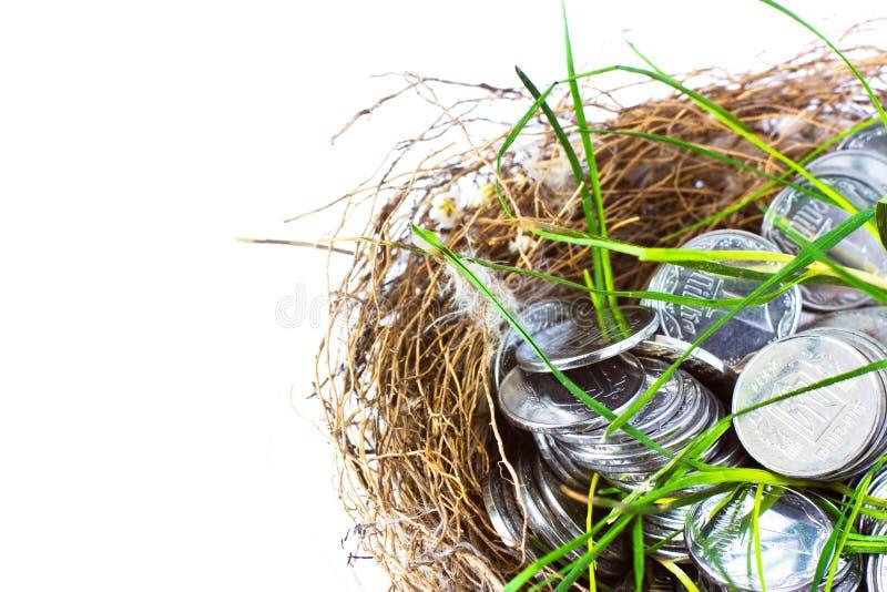 Pièces en argent dans le nid photos stock