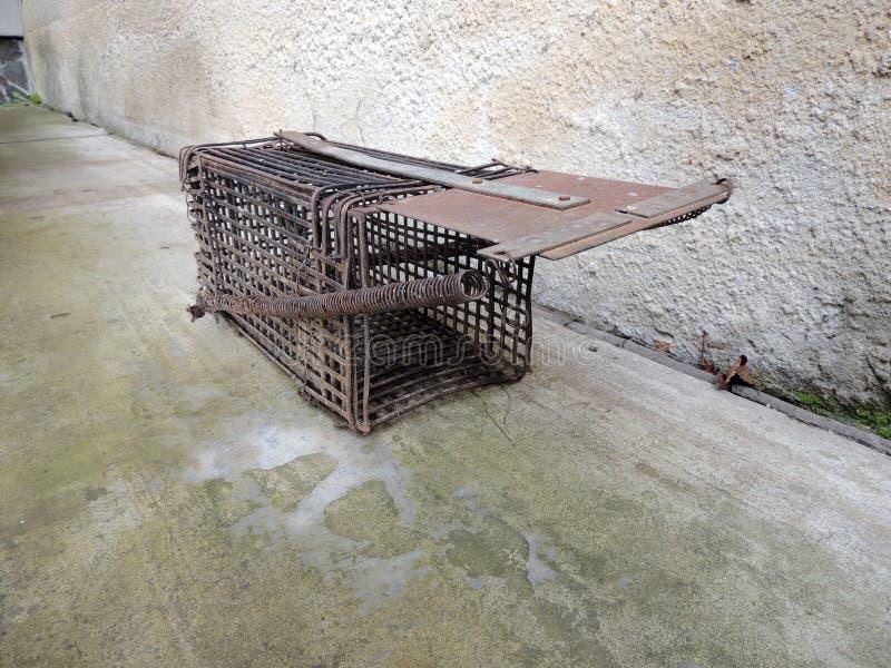 Piege De Rat Fait Maison Image Stock Image Du Maison 118673951