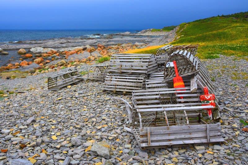 Pièges de homard, Gros Morne National Park, Terre-Neuve, Canada photographie stock libre de droits