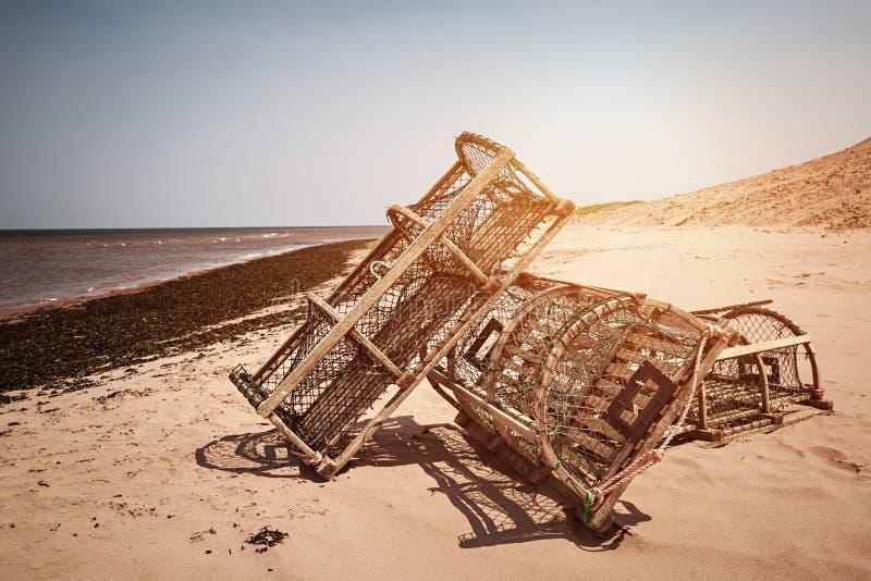 Pièges de homard sur la plage photographie stock libre de droits