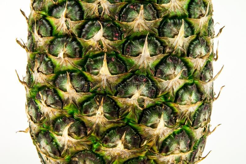 Piña aislada en el fondo blanco Fruta del verano imagen de archivo libre de regalías