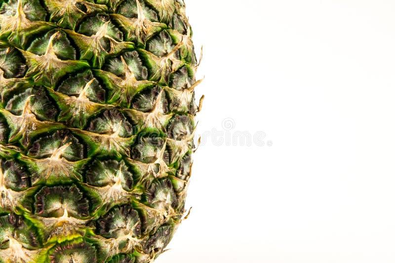 Piña aislada en el fondo blanco Fruta del verano fotografía de archivo