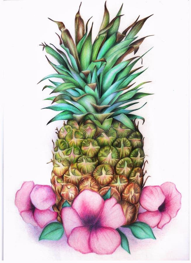 Piña con las flores ilustración del vector