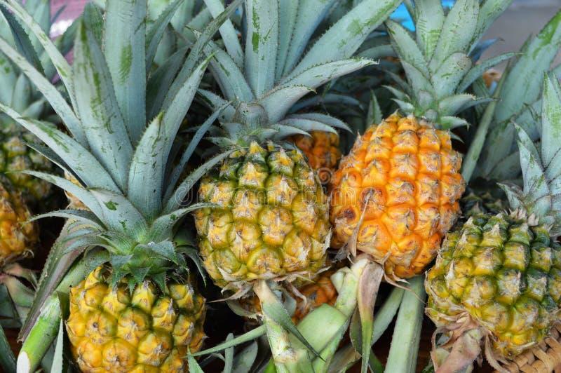 Download Piña fresca imagen de archivo. Imagen de orgánico, jugoso - 42429269