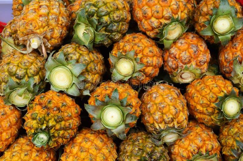 Download Piña fresca imagen de archivo. Imagen de jugoso, tropical - 42429299