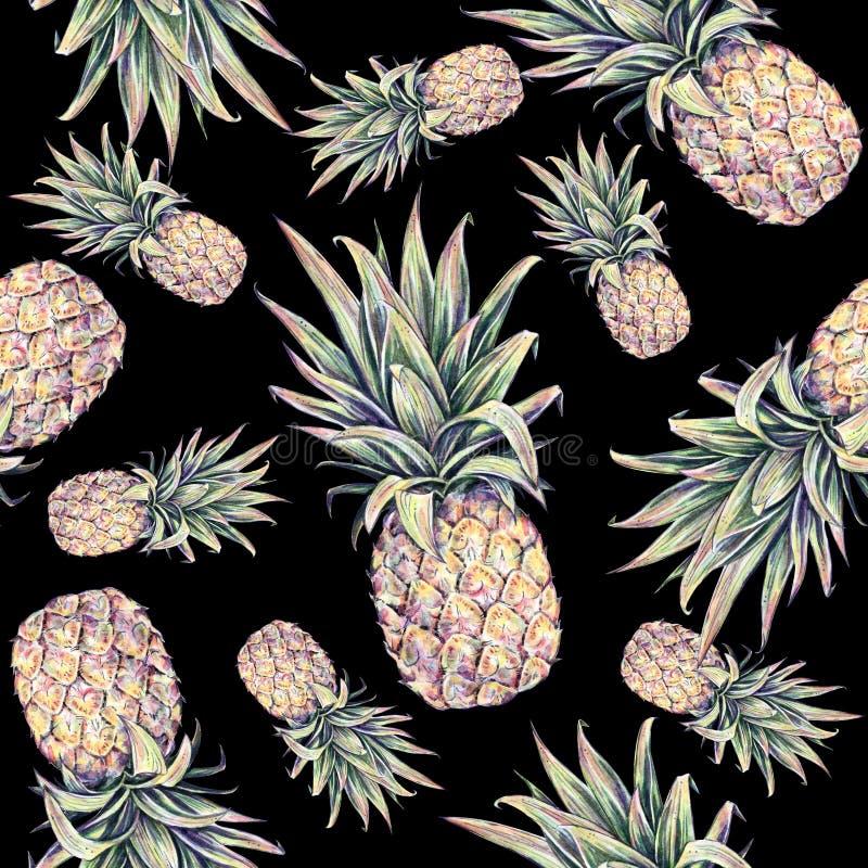 Piñas en un fondo negro Ejemplo colorido de la acuarela Fruta tropical Modelo inconsútil stock de ilustración