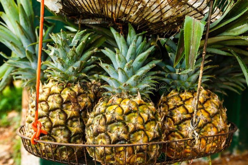 Piñas para la venta en Cuba imagen de archivo