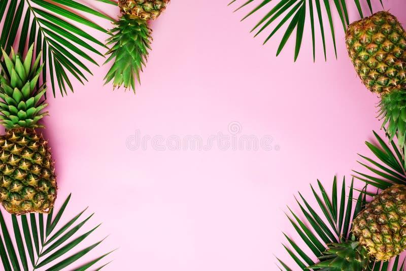 Piñas y hojas de palma tropicales en fondo dinámico del rosa en colores pastel Concepto del verano Endecha plana creativa con el  foto de archivo