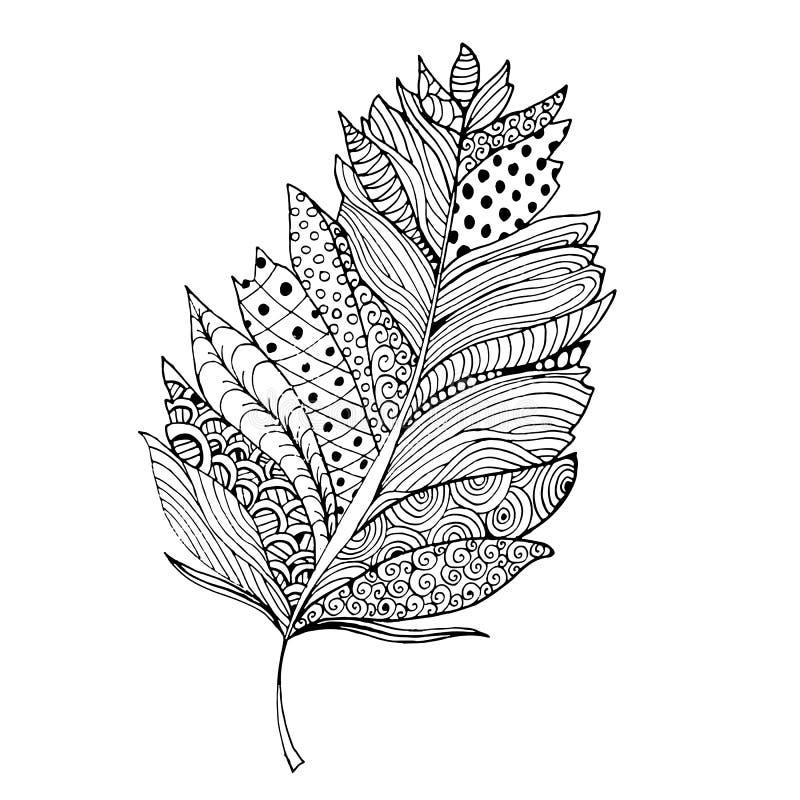 Piórko w zentangle stylu Ornamentacyjna pełnia Odizolowywający na bielu royalty ilustracja