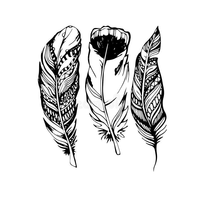 Piórkowy ilustracyjny sztuki ikony dutki symbol ilustracji