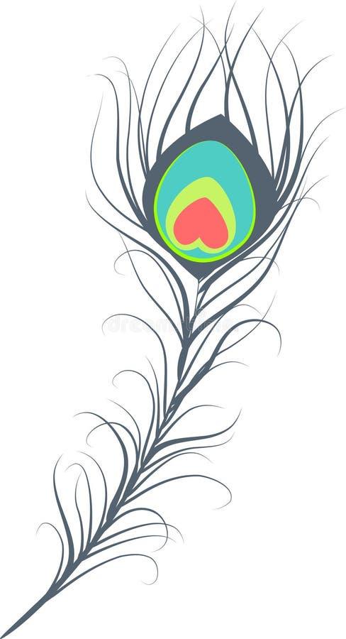piórkowy paw ilustracji