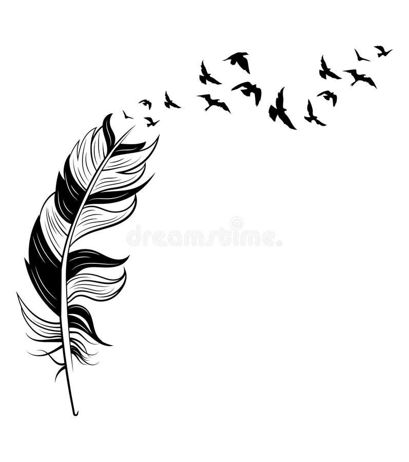 Pióro i ptaki Czarno-białe wektory stylizowanego pióra z sylwetkami stad ptaków Tatuaż royalty ilustracja