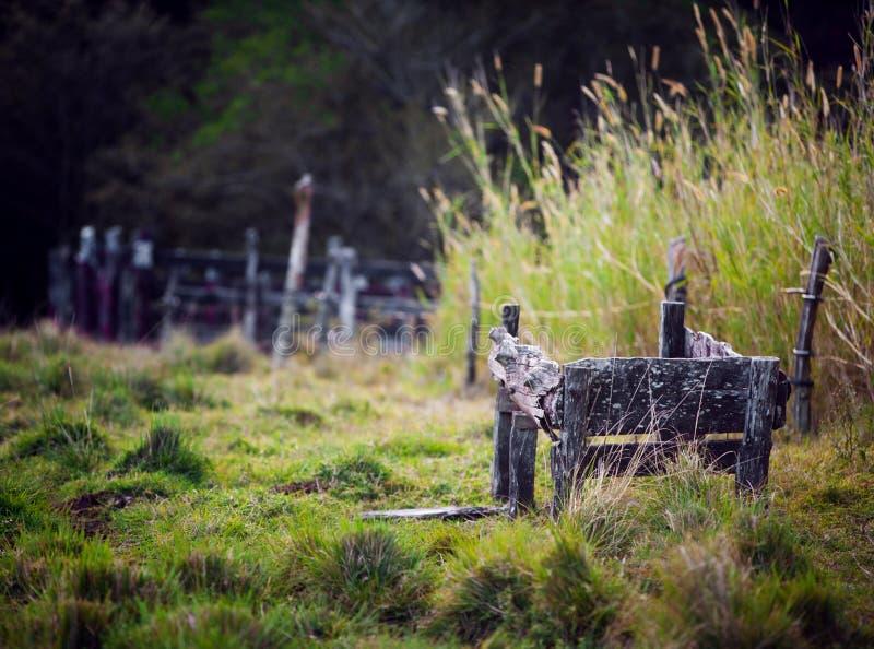 pióro zaniechany rancho zdjęcia royalty free