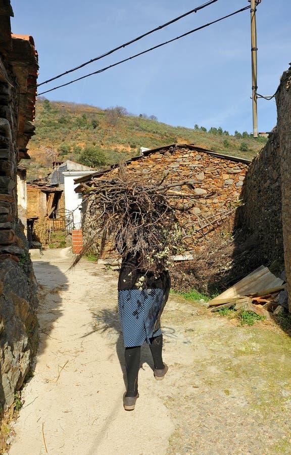 Più vecchia legna da ardere di trasporto della donna, Hurdes, provincia di Caceres, Spagna fotografia stock
