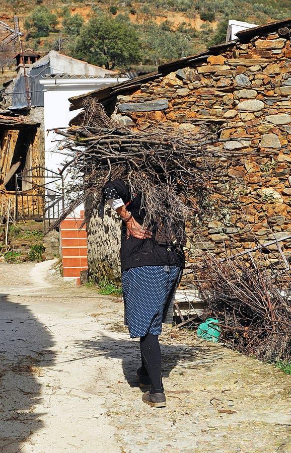 Più vecchia legna da ardere di trasporto della donna, Hurdes, provincia di Caceres, Spagna fotografia stock libera da diritti