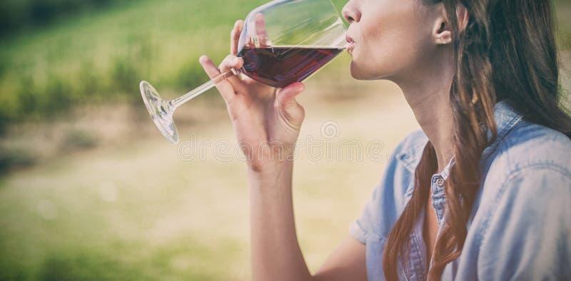 pić czerwone wino kobiety obraz stock