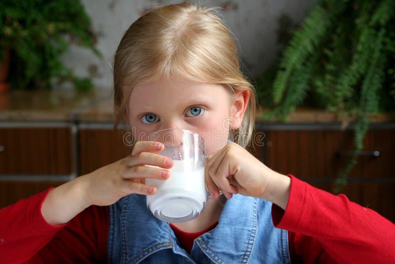 pić mleko zdjęcie royalty free